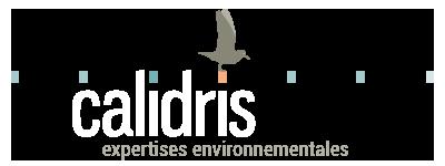 calidris Logo A